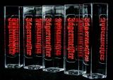 5 x Jägermeister Likör, Glas / Gläser Acryl Reagenzglas eckige Ausführung